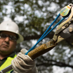 Tree Cutting and Trimming Tools for Linemen and Utility Workers